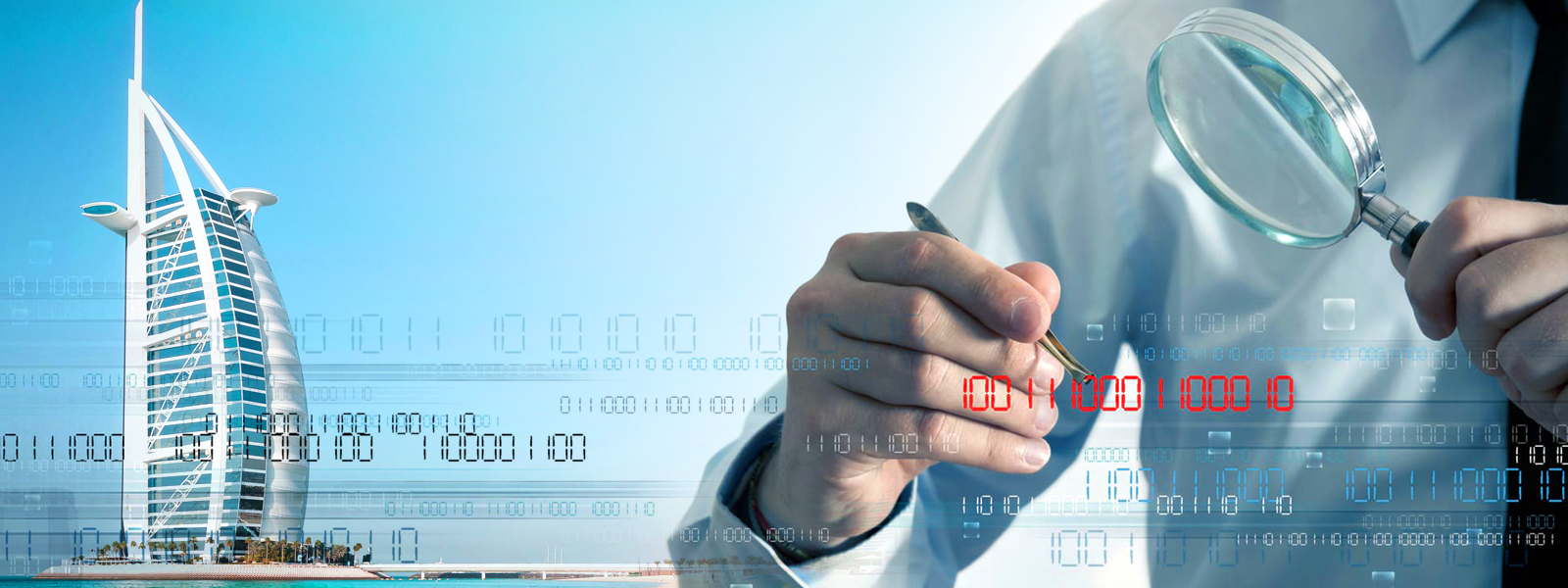 Forensic Audit Services